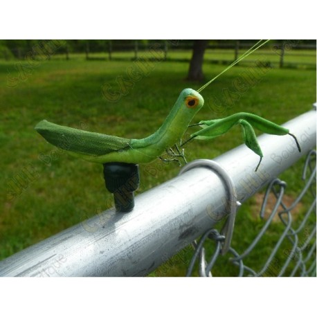 "Cache ""Magnetic insect"" - Praying mantis"