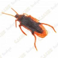 """Cache """"Insecto con imán"""" - Cucaracha"""