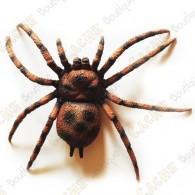 """Cache """"Bestiole"""" - Grosse araignée"""