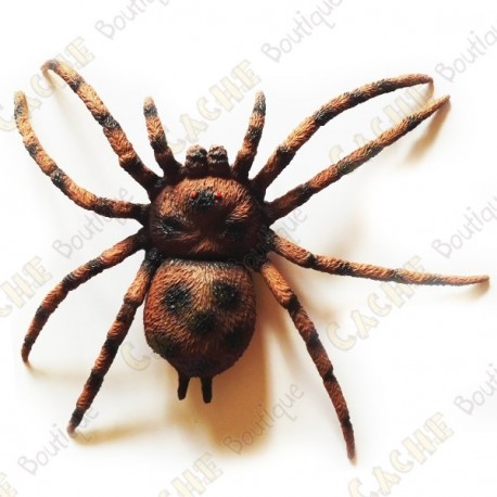 """Cache """"insect"""" - Large spider"""
