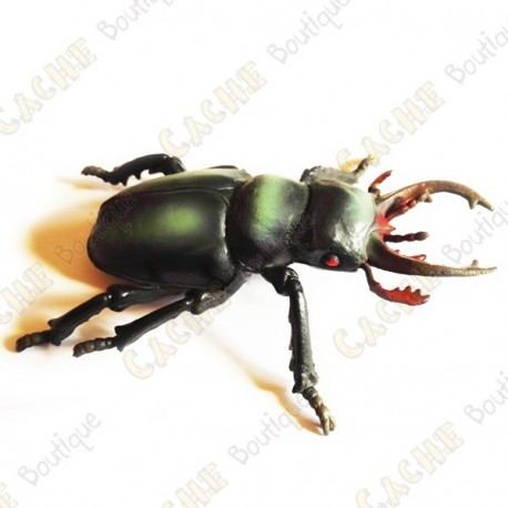 """Cache """"insect"""" - Large beetle"""