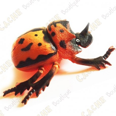 """Cache """"insect"""" - Large orange beetle"""