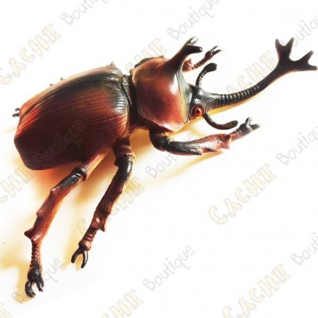 "Cache ""insect"" - Large rhinoceros beetle"