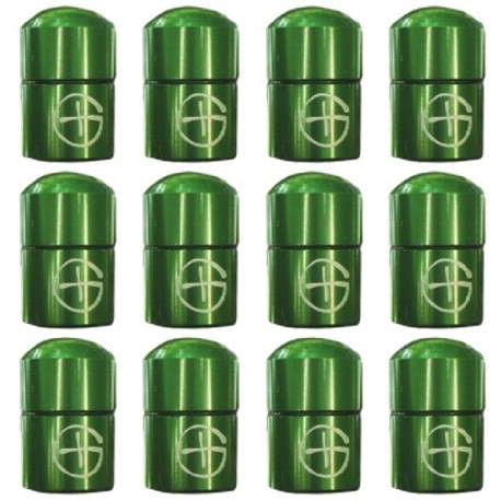 """Nano Cache con imán """"Geo"""" x 12 - Verde"""