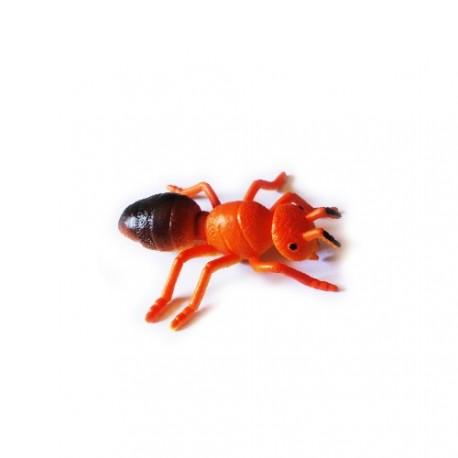 """Cache """"Inseto magnética"""" - Formiga vermelha"""
