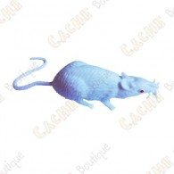 "Cache ""insect"" - White mouse"